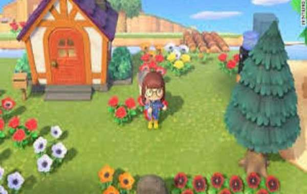 I meanin New Leaf we didn't even get pumpkin items