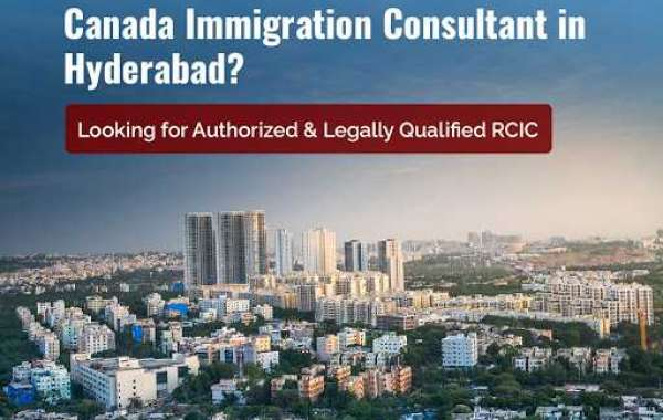 Should I apply for the Canadian permanent residency (EXPRESS ENTRY) on my very own or through a regulated consultant?